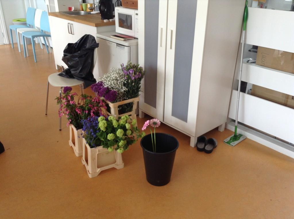Bonsai Café NL 2 mei - 11