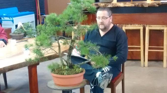 Voorproefje Nieuwjaarsreceptie/Winterbomenpresentatie