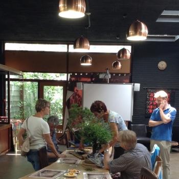Volgend weekend Bonsai Café NL