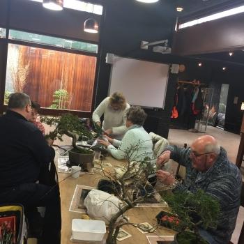 Bonsai Café 3 maart