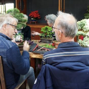 Bonsai Café NL 4 mei